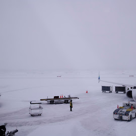 Whiteout Conditions at Ted Stevens Airport by Marc Baisden - People Street & Candids ( travel adventure, whiteout conditions, safety, airports, alaska )