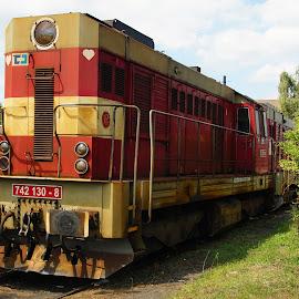 loco-tractors - czech freight locomotive by Petr Germanič - Transportation Trains ( locomotive, czech, train )