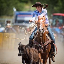 Wrangling Calves by Bob Grandpre - Sports & Fitness Rodeo/Bull Riding ( roping, high school, calf, horse, rodeo, cowgirl, river region,  )