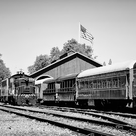 Train by Carl0s Dennis - Landscapes Travel ( sacramento, black and white, california, usa,  )