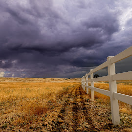 Millville Plains by Becca McKinnon - Landscapes Prairies, Meadows & Fields ( clouds, field, fence, shasta, sky, redding, plains, storm, millville, plain, millville plains )
