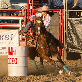 Tight Turn by Jim Freeman - Sports & Fitness Rodeo/Bull Riding ( barrel racing, horse, action, rodeo, cowgirl )