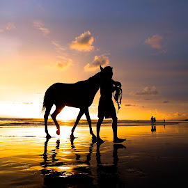Man and Horse by TAUFIQ IHSAN ISMAIL - People Portraits of Men ( sunset, silhouette, horse, beach, people, man, animal )