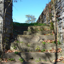 Stairway by Robin Stover - City,  Street & Park  Historic Districts
