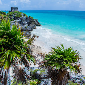 Tulum Mayan Ruins, Tulum, Mexico by Stephanie Walsh - Travel Locations Landmarks ( turquoise water, mexico, tropical, palm trees, beach, mayan ruins, paradise, tulum )