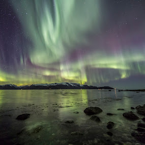 aurora over sea by Benny Høynes - Landscapes Waterscapes ( canon, northern lights, aurora, aurora borealis, norway,  )