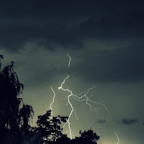 Lightning by Dalia Račkauskaitė - Nature Up Close Other Natural Objects ( lightning, storm, evening )