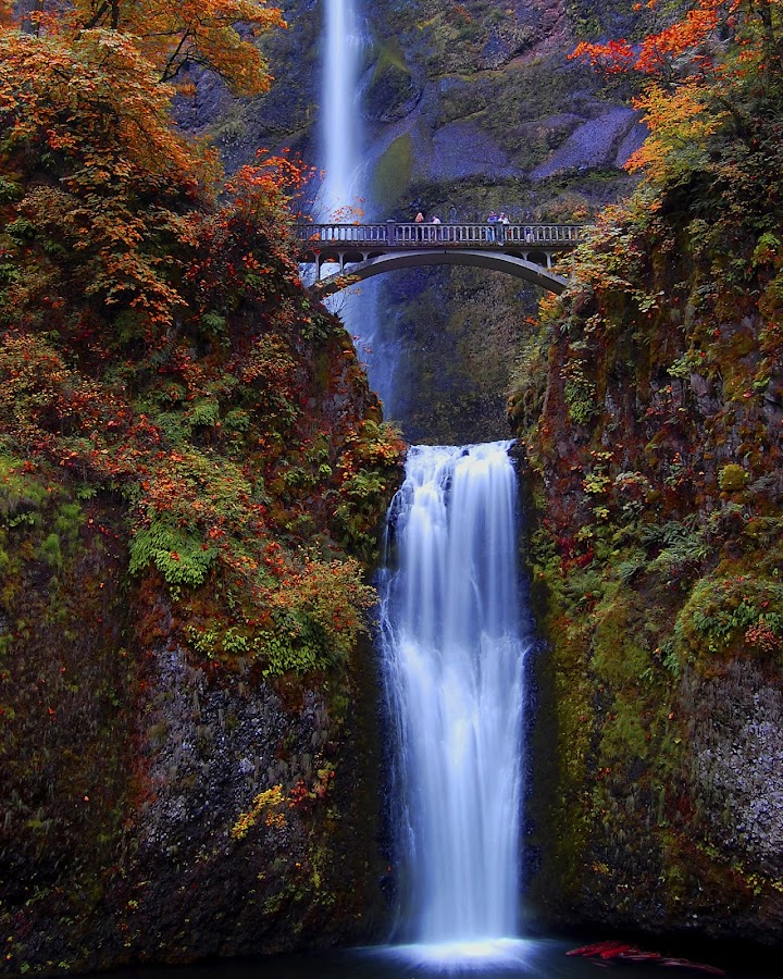 Multnomah Falls by Scott Wood - Landscapes Travel ( oregon, columbia, gorge, fall, multnomah, river,  )