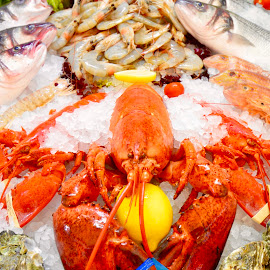 The Main Course by Dave Feldkamp - Food & Drink Cooking & Baking ( shrimp, fish, lobster, fish market, shell fish )