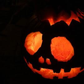 Jack by Brenda Conrad - Public Holidays Halloween ( orange, jack o lantern, pumpkin, pumpkins, halloween )