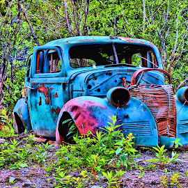 by Don Mann - Transportation Automobiles