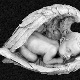 Angel Baby 1 Black And White by RMC Rochester - Black & White Objects & Still Life ( abstract, macro, black and white, art, random, object, people )
