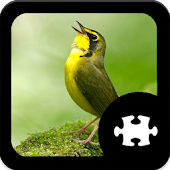 Game Bird Jigsaw Puzzle apk for kindle fire
