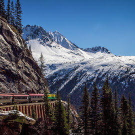 by Judy White - Transportation Trains ( forests, mountains, alaska, snow, grandure, travel )