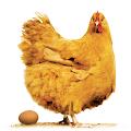 App Poultry Farm Revenue Calc apk for kindle fire