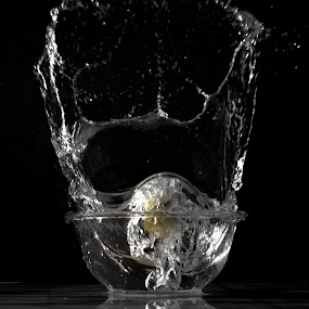 Splash Lemon by Arpan Sagar - Novices Only Abstract ( #splash, #nikon, #d5100, #water, #lemon )
