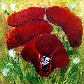 Poppies by Jasna Dragun - Painting All Painting ( nature, acrylic, poppies, flowers, painting, artwork, floral )
