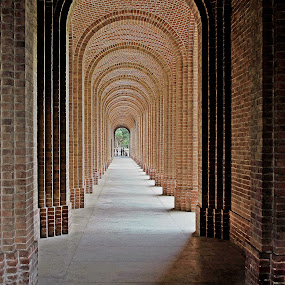 Corridor in FRI University by Pradeep Kumar - Buildings & Architecture Architectural Detail (  )