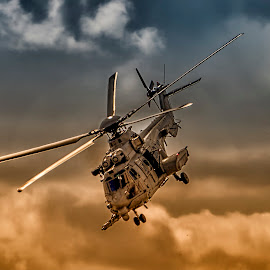 by Stanley P. - Transportation Helicopters