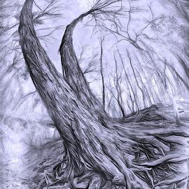 by Al Duke - Black & White Abstract