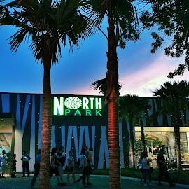 North Park Residence by Gary Walsh - City,  Street & Park  Neighborhoods