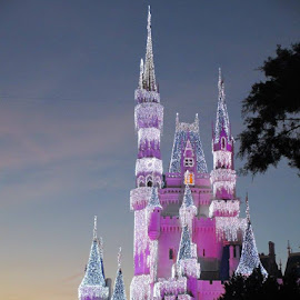 Cinderella's Castle by twilight by Kathleen Barton - Novices Only Street & Candid