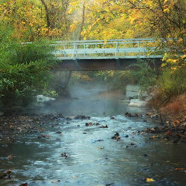 THE CREEK AT TANYARD by Dana Johnson - Landscapes Waterscapes ( crossing, stream, autumn, waterscape, creek, landscape )