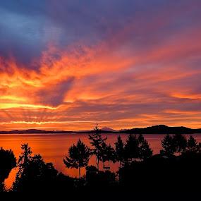 Salish Sea Sunrise by Campbell McCubbin - Landscapes Sunsets & Sunrises ( silhouette, sunrise, saltspring island, salish sea, island,  )
