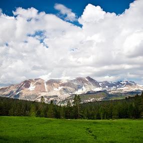 Green Field, Clouds & Mountain by Joe Boyle - Landscapes Mountains & Hills ( field, clouds, sky, mountain, grass, blue, trail, jmt, john, cloud, muir )