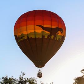 Jurasic Park by Dave Dabour - Transportation Other ( warren county farmers fair, summer, jurasic park, balloon, friday, hot air balloons )