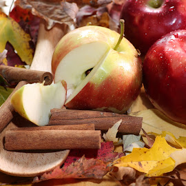 Fall Apples and Cinnamon  by Stephen Goodhue - Food & Drink Fruits & Vegetables ( red, cinnamon, autumn, apple, macintosh, vermont, leaves )