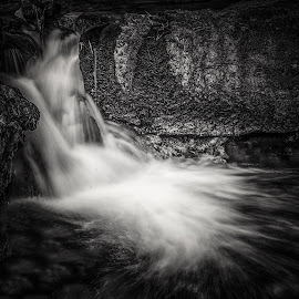 Silky Smooth by Jayanta Basu - Landscapes Waterscapes ( black and white, waterscape, waterfall, india, travel, landscape )