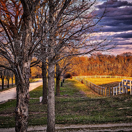 Stables and Pasture by Pat Lasley - City,  Street & Park  City Parks ( clouds, pasture, sky, parks, stable, lane )