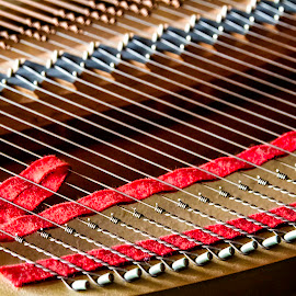 Fine Tuning  6637 by Karen Celella - Artistic Objects Musical Instruments ( music, macro, detail, piano, focus stacking, strings, instrument )