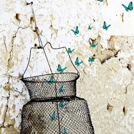 Find your own path by Nikola Ucur - Digital Art Abstract ( flying, butterflies, digital manipulation, digital art, digital photography, digital )