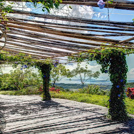 by Victor Roman - Buildings & Architecture Other Exteriors ( mountain, outdoors, trellis, nikon d300, antipolo )