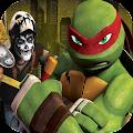 Turtles Legend Ninja