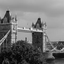 tower bridge by Franky Vanlerberghe - Black & White Buildings & Architecture ( tower, london, tower bridge,  )