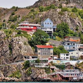 Newfoundland by Carl Chalupa - City,  Street & Park  Neighborhoods ( newfoundland,  )