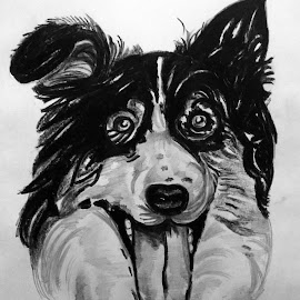 Bow Wow .... by Pritam Bhowmick - Drawing All Drawing