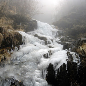Frosty rocks! by Rajarshi Mitra - Nature Up Close Rock & Stone ( himalays, bushes, waterfall, frozen, rocks )