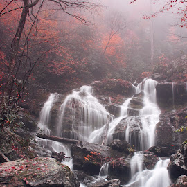 Cascades of Carolinas - I by Avishek Bhattacharya - Landscapes Waterscapes ( water, waterfalls, lower, ashville, color, fog, autumn, foliage, waterfall, fall, catawba, rock, mist )