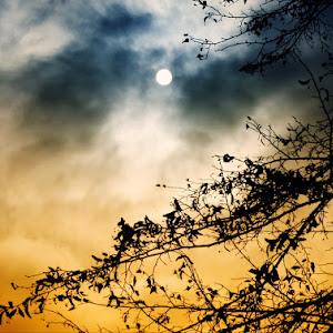 A sun.jpg