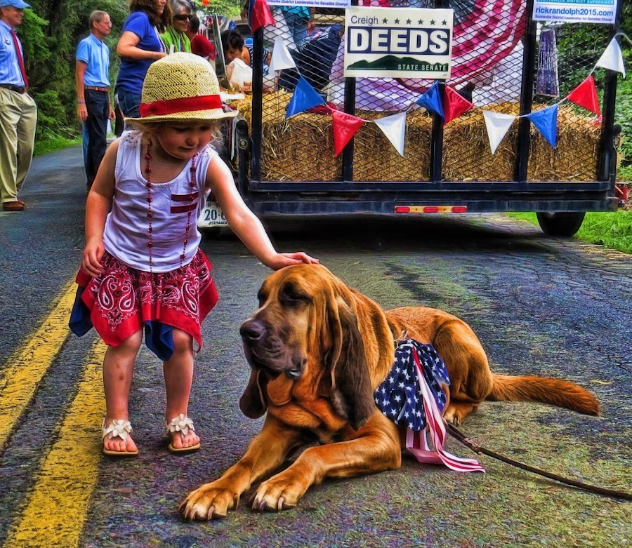 by Stacy Knighton - Public Holidays July 4th
