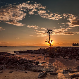 Alone in Sunset by NC Wong - Landscapes Sunsets & Sunrises