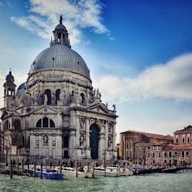 Salute by Jiri Cetkovsky - Buildings & Architecture Public & Historical ( salute, venezia, basilica, maria, italy, historic )