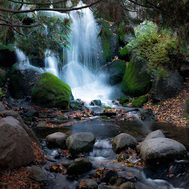 Waterfall by Tina Hailey - Nature Up Close Water ( water, waterscape, tinas captured moments, waterfall, trees )