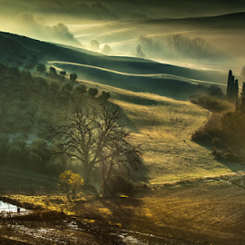 Morning light in Tuscany,Italy. by Enzo Minchella - Landscapes Mountains & Hills ( countryside, hills, tuscany, fog, morning, italy,  )