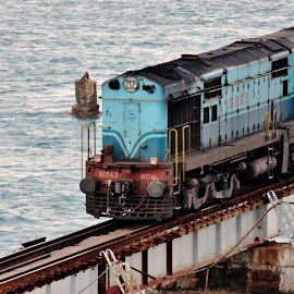 The Maestro arriving.. by Anoop Namboothiri - Transportation Trains ( anoop namboothiri, sea, train, ocean, transportation, water body,  )
