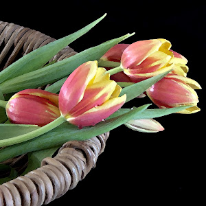 20120324_Painting tulips in the basket_0730.jpg